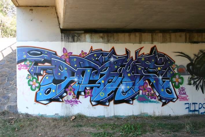 Art Crimes Australia 5
